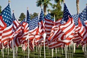 Group of American Flags flying in tribute to democracy and in honor of our Veterans.